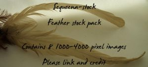 Feather Stock Pack by Sequeena-stock