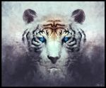 White Tiger by Rennee