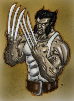 Wolverine Color by jomerperez
