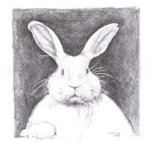 easter bunny portrait by lovelycristina