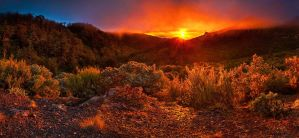 Pinnacles Hut Sunrise by mark-flammable