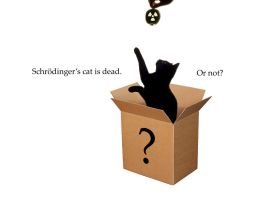 Schrodinger's Cat - 2 by firefoxcentral
