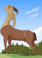 adan the centaur by veki-kun