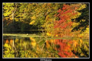 Reflections of Fall by kdjohnston