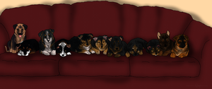 .+: New Pups on the Block :+. by mimmiley