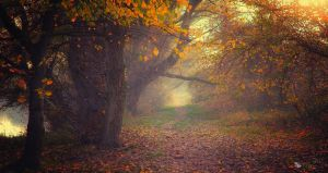 Till the End of Time by ildiko-neer