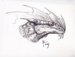 Dragon sketch by E-Dowely
