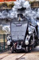 Sir Nigel Gresley at Shildon Locomotion by Breezypants