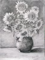Sunflower in black and white by Miknyik
