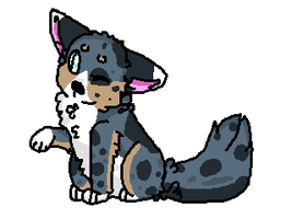 australian shepard_request by P0CKYY