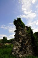 stone wall ruin4 vertical by marlene-stock