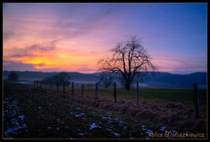 In Between Days by allym007