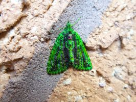 Purple Skinned Invading Alien Disguised as a Moth by SrTw