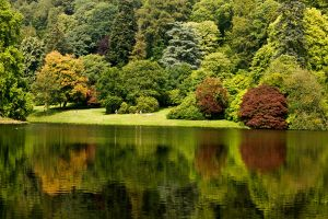 Stourhead Reflections by parallel-pam