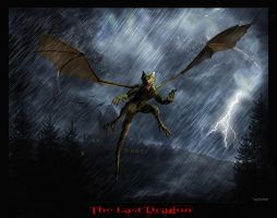 The Last Dragon by DaBaptist