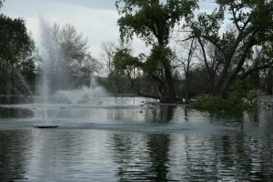 fountain pond stock 2 by Aphoticbeauty