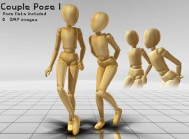 Couple Pack -1 by The-Pose-a-bilities