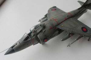 Sea Harrier FRS.1 III by Nexius22