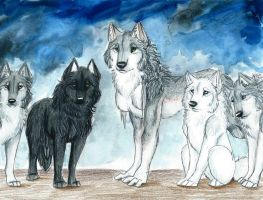 The Pack by starwolf303