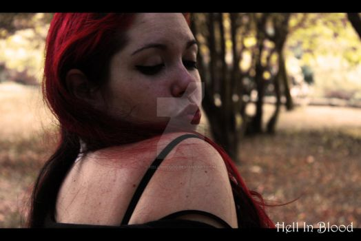 My Blood In Your Veins by HellInBlood