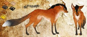 *RH* Spider Character Sheet by CrazyRodeoGirl