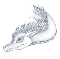 Dragon Sasaki Head Sketch by InfernoKat