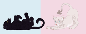 the cats meow by sippet