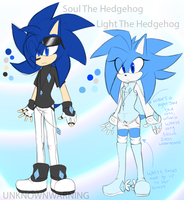 Soul And Light The Hedgehog Reference Sheet by UnknownWarning