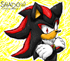 Shadow ms paint by Kyuubi83256