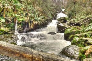 Keppel Falls HDR 2 by DanielleMiner
