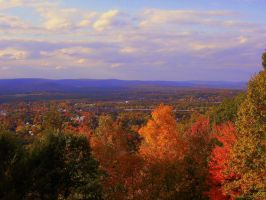 New England Foliage by danigurrl