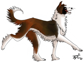 Cassidy the AndrogyDog by DegreesOfDeath