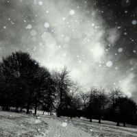 This cold December night... by RickHaigh