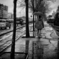 in the rain.. by pigarot