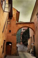Sighisoara I by Callu