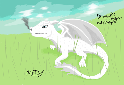 Baby Dragon by Mira55X