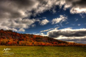 HDR Autumn Field 4 by Nebey