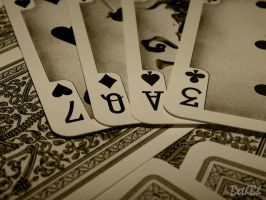 Love Is On The Cards by BethBH-Photography