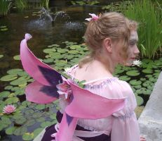 Flower Fairies and Peacocks 2 by MaiSheriCostumes