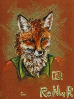 Renar Fox by TS-cat