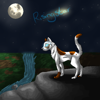 Gift: Risingstar by InkSheWolf
