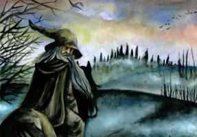 Nightfall in Middle-earth by Tacaret
