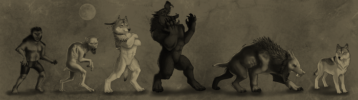 Werewolf Archetypes by OfficerBadger