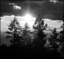 B and W Sunset by jewelslove