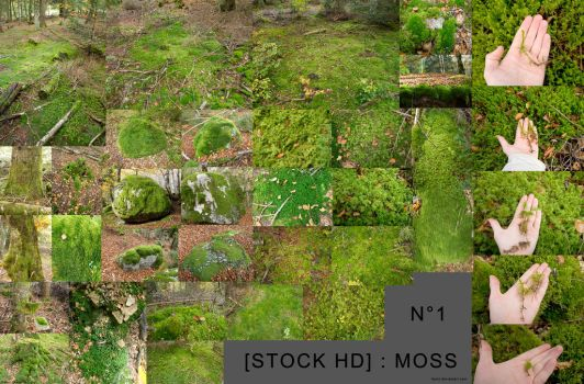 [stock] hd moss pack 01 by Itsmil