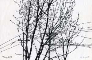 Trees and Wires, Ink by hank1