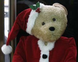 Christmas teddybear-head shot by scratzilla
