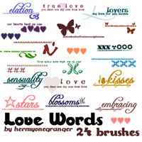 Love Words Brush Set by hermyonegranger