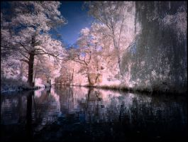 Summer in September II infrared by MichiLauke
