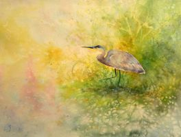 heron by seadworp
